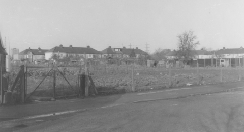 Allotments in Brooker Road